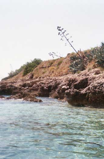 Grabov Rat coastal line is rather rocky